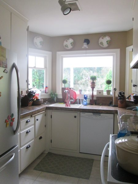 Traditional Redux Kitchen - Before